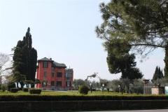 verona2010-040